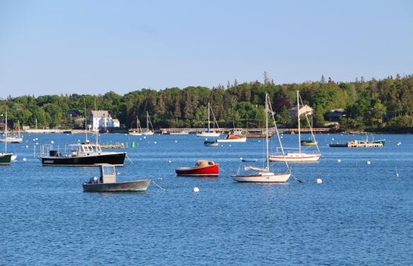 Acadia & Fundy 032