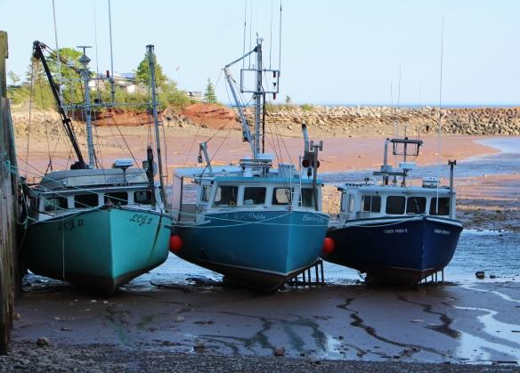 Acadia & Fundy 197