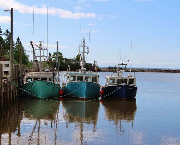 Acadia & Fundy 212