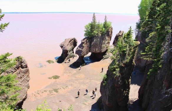 Acadia & Fundy 313