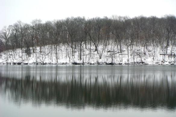 Snow Shots 2-25-11 014