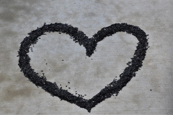 Mending Broken Hearts | mdorandotcom